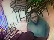 Tin tức - Giả vờ vào quán uống cafe để trộm con chó Fox