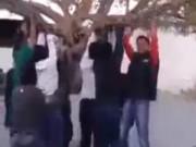 Clip Eva - Thanh niên đu cây cổ thụ bị ngã