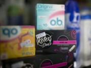 Tin tức - Băng vệ sinh phụ nữ thiếu trầm trọng ở Argentina