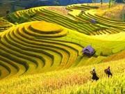 Đi đâu - Xem gì - Việt Nam lọt top 10 nước du lịch giá rẻ nhất thế giới 2014