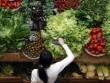 Sức khỏe - Sống lâu hơn nhờ ăn nhiều chất xơ
