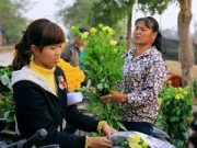 Tin tức - Ngắm phiên chợ độc đáo ở làng hoa Tây Tựu