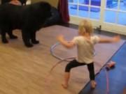 Clip Eva - Em bé đáng yêu dạy cún lắc vòng