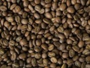 Sức khỏe - Protein trong cà phê giúp giảm đau, an thần