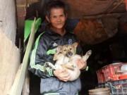 Tin tức - Cặp vợ chồng nghèo 'nhịn ăn' nuôi cả đàn chó hoang