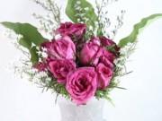 Nhà đẹp - Bình hồng đơn giản cho nàng hơi đoảng