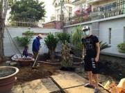 Nhà đẹp - Cao Thái Sơn quần đùi dép lê sửa sang vườn nhà