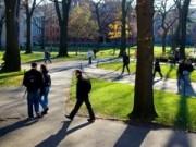 Tin tức - ĐH Harvard: Ban hành chỉ thị cấm thầy - trò yêu nhau