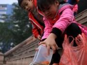 Mua sắm - Giá cả - Người Hà Nội thả cá chép sớm tiễn Táo quân