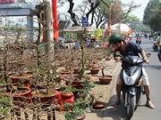 Tin tức - Sài Gòn hiu hắt hoa Tết