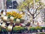 Tin tức - Ảnh: Làng quê thanh bình giữa trung tâm Sài Gòn