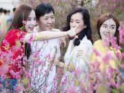 Làng sao - Angela Phương Trinh đưa cả gia đình đi chọn hoa Tết