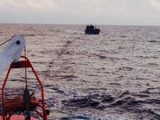 Tin tức - Sáng mùng 3 Tết, cứu 9 thuyền viên trôi dạt trên biển