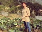 Nhà đẹp - Vườn rau đầu xuân của gia đình Hoàng Thùy Linh