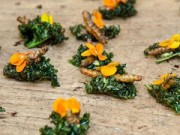 Bếp Eva - Xu hướng ẩm thực 2015: Côn trùng lên ngôi?
