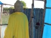 """Tin tức - Phát hiện tượng Phật cổ giữa """"Cánh đồng chó ngáp"""""""