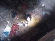Tin tức - TQ: Dân mạng giải cứu cô gái bị giam cầm suốt 5 năm