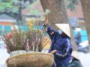 Tin tức - Rằm tháng Giêng, người Hà Nội chơi đào rừng, hoa lê