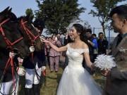 Eva Yêu - Màn rước dâu bằng đàn ngựa gây náo loạn phố phường