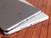 Eva Sành điệu - Apple hoãn sản xuất iPad 12,9 inch sang tháng 9/2015