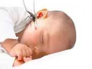 Nhà đẹp - Thuốc chống muỗi an toàn mà hiệu quả tức thì cho bé