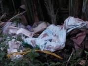 Pháp luật - Phát hiện thi thể cô giáo tiểu học cháy xém tại nhà riêng
