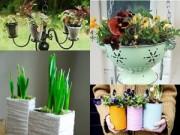 Nhà đẹp - 21 ý tưởng điên rồ biến vườn nhà thành thiên đường