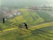 Clip Eva - Choáng với độ cao nơi làm việc của thợ điện Trung Quốc