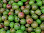 Bếp Eva - Cuối xuân, thưởng thức hương mận hậu đầu mùa