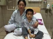 Tin hot - Cả gia đình ngộ độc nấm, 2 người tử vong