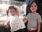 Hậu trường - Hai con Hồng Nhung hào hứng đi xem phim
