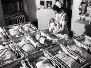 Mang thai 6-9 tháng - Cợ hội thụ thai con trai và con gái là như nhau