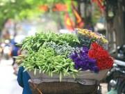 """Hoa loa kèn khoe sắc trên khắp phố Hà Nội """"gọi"""" hè về"""