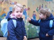 Làng sao - Ngắm Hoàng tử bé George ngày đầu tiên đi học