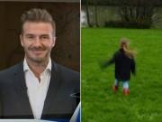 Làng sao - Beckham sợ nghĩ tới cảnh Harper hẹn hò