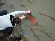 Người dân sắm đồ, thả cá chép tiễn Táo quân sớm