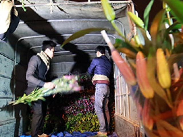 Chợ ly đêm làng Tây Tựu tấp nập ngày cuối năm