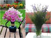 Nhà đẹp - Những loài hoa cắm Tết rước may mắn đến nhà