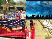 5 địa điểm vui chơi hấp dẫn cho bé du xuân tại Hà Nội