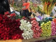 Mua sắm - Giá cả - Khan hiếm, hoa hồng Valentine tăng giá mạnh