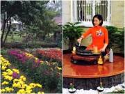 Nhà đẹp - Đột nhập vườn xuân trăm cỏ cây của sao Việt