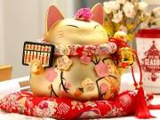 Nhà đẹp - Những bí mật thú vị về chú mèo Thần tài Nhật Bản