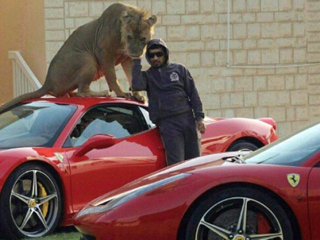 Choáng ngợp với thú vui của giới nhà giàu Dubai