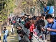Tin tức - Dẫm chân lên cỏ, chen nhau chụp ảnh ở Kim Mã