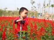 Ảnh đẹp của bé - AD71107: Đào Hải Phong