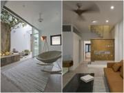 Nhà đẹp - HN: Đã mắt nhà ống trồng cây xanh trong nhà