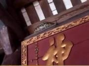"""Pháp luật - Hãi hùng nhìn con trăn """"mắc võng"""" trên ngôi đền ở Nam Định"""