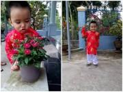Ảnh đẹp của bé - Nguyễn Vũ Thành Long - AD42298