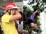 Fan Việt khóc lóc, leo nóc nhà chụp hình T-ara