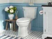 Nhà đẹp - Làm sạch nhà vệ sinh và bồn tiểu đúng cách